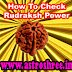 What To Do To Check Original Rudraksh?
