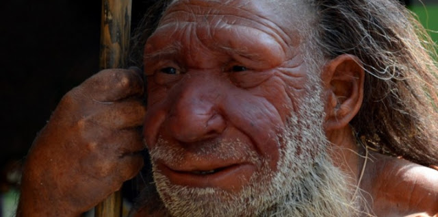 neandertal extinction