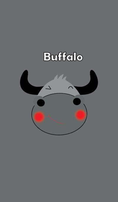 Cute buffalo theme