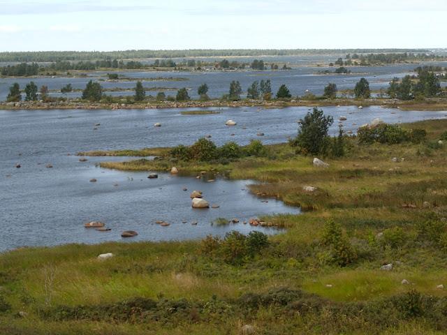 Merimaisema, jossa kapeat niemet ja lahdelmat vuorottelevat pyykkilautamaisesti