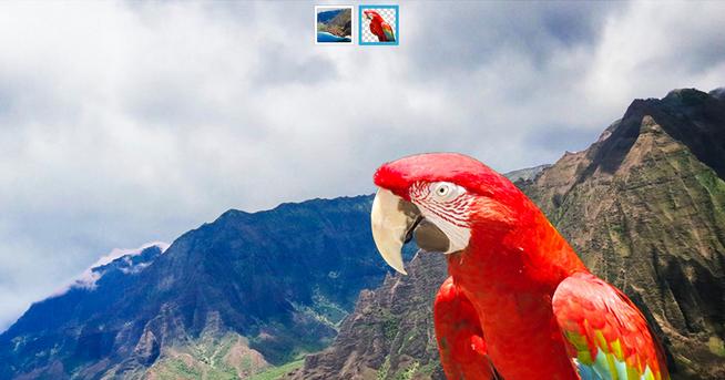 Adobe Photoshop 照片去背最強軟體釋出免費下載!