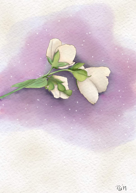 Floral watercolour by Rachel Gillham Art