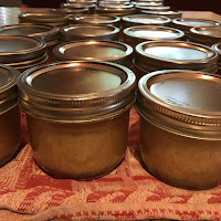 Photo of half-pint jars of home canned applesauce cooling on a towel-covered countertop. https://trimazing.com/