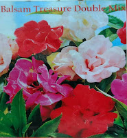 Balsam treasure double mix