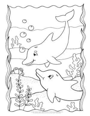 Tranh tô màu hai chú cá heo bơi lội