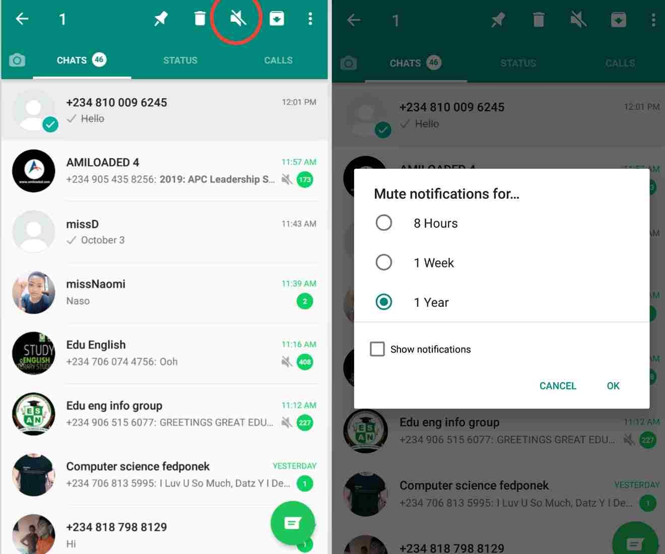 whatsapp tricks - how to mute a contact or group of contacts from your friends list