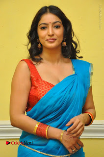 Telugu Actress Vaibhavi Stills in Blue Saree at Www.Meena Bazaar Movie Opening  0007.JPG