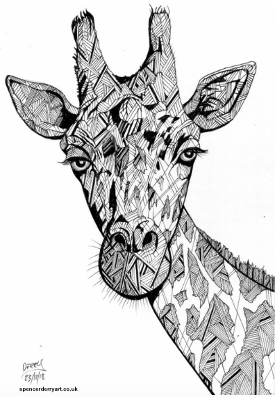 An original animal wild life art drawing. A stylised illustration of a Giraffe, hand-drawn by British artist Spencer J. Derry in 2018. Artwork is Not Framed.