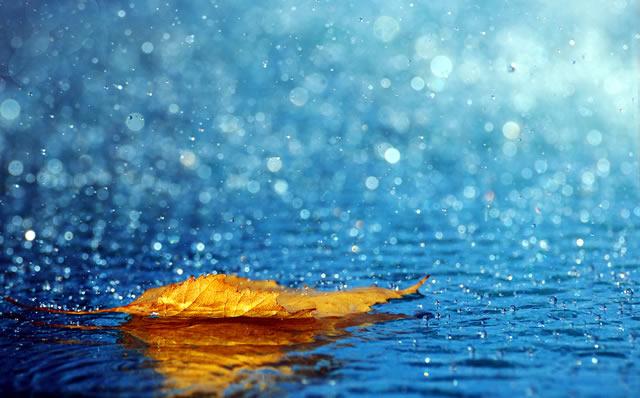 87+ Gambar Air Hujan Turun Paling Bagus