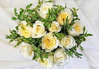 اشيك صور وخلفيات الورد