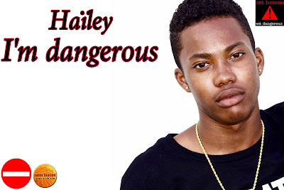 https://soundcloud.com/haileyofficiel/im-dangerous-2