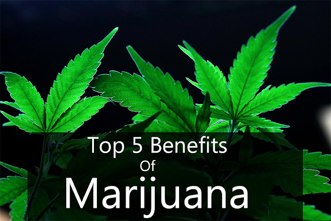 *Must Read* - Top 5 Benefits of Marijuana