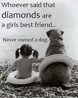 whoever said diamonds are a girls best friend. Never owned a dog