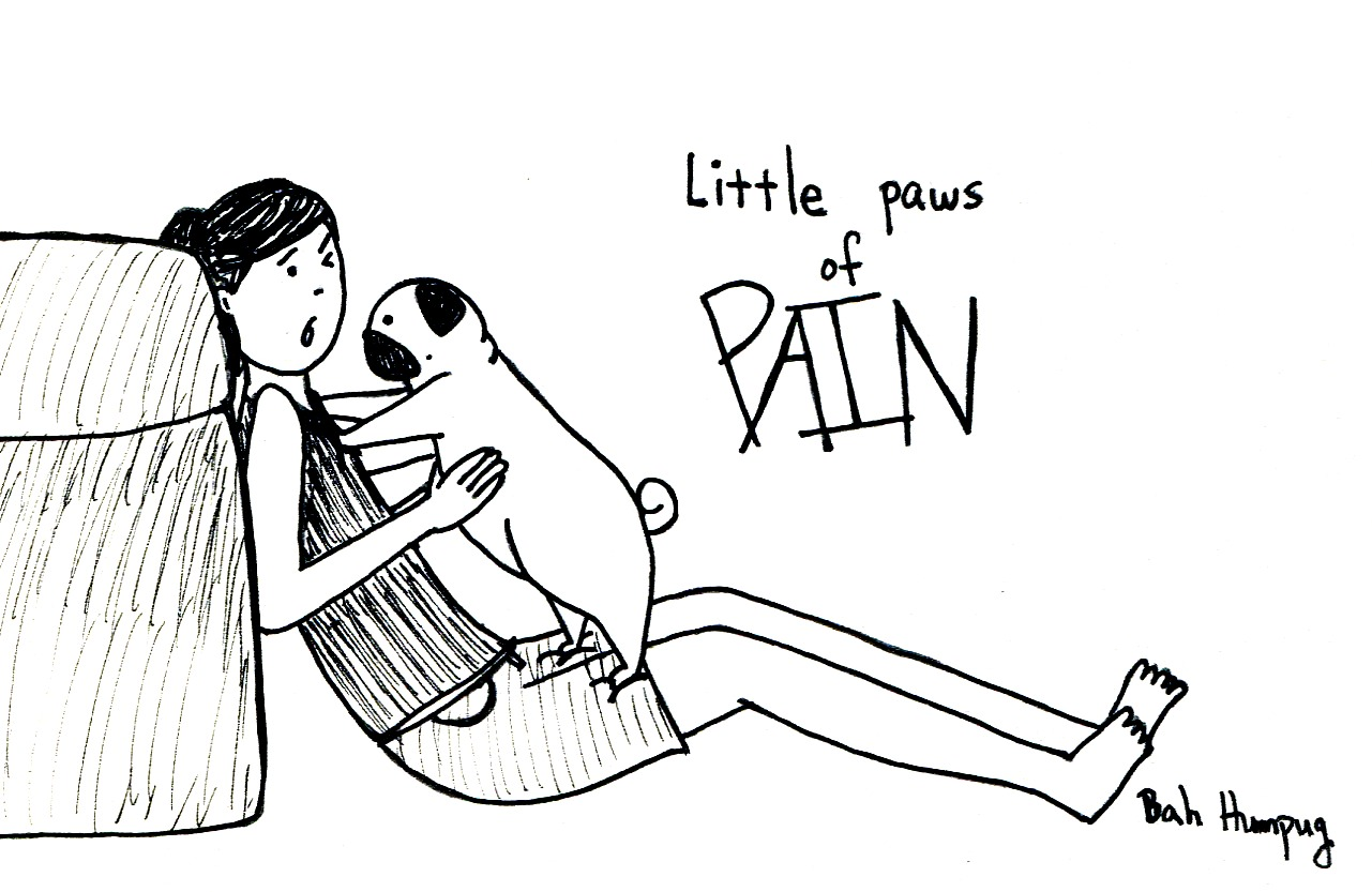 Bah Humpug Little Paws Of Pain