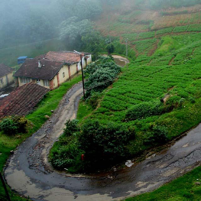 hills dwellings coonoor ooty