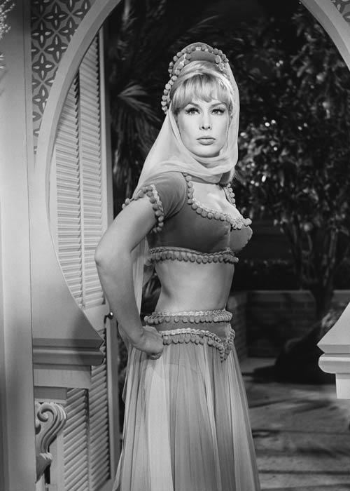 Hot And Sexy Actress  Barbara Eden