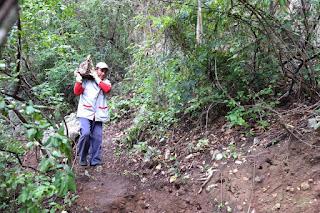 Prefeitura do CES/UFCG realiza serviços para preservação do Horto Florestal de Cuité