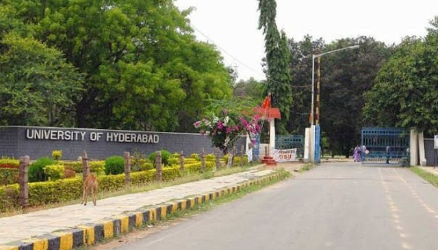 Recruit 114 faculty positions University of Hyderabad.