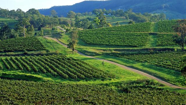 El valle de Hunter, Australia, abre el camino