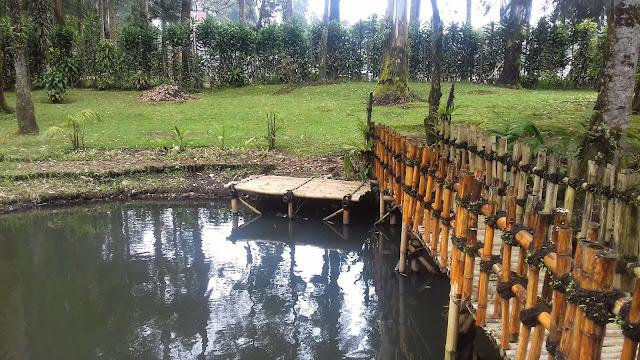 Harga tiket , nasi kotak, Cimanggu Ciwidey 2017 - Cimanggu Ciwidey