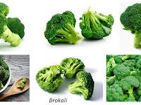 Cara Membudidayakan Tanaman Brokoli Di Dataran Tinggi