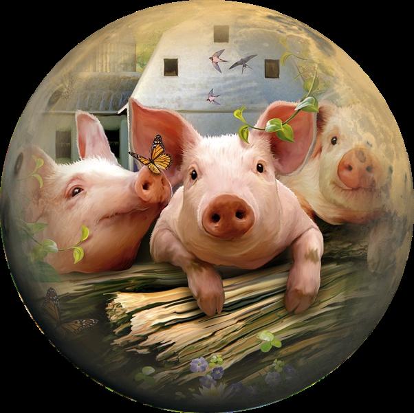 Новогодние круглые картинки со свинкой, розы картинки текстом