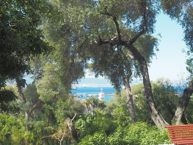 gibraltar botanical garden sea view