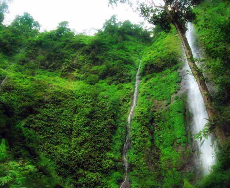 5 Tempat Wisata Di Sekitar Jombang Yang Wajib Dikunjungi M Wildan A S
