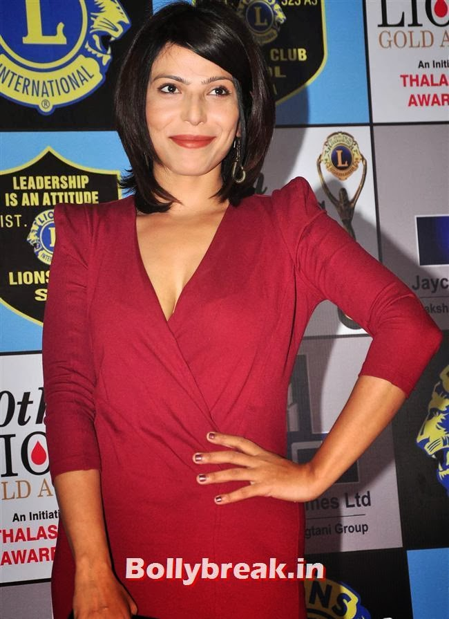 Shilpa Shukla, Celebs at Lions Gold Awards 2014