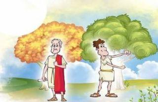 Fábula: La diosa y el árbol