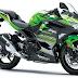 Kawasaki Ninja 400 cc Capacity Launches in India