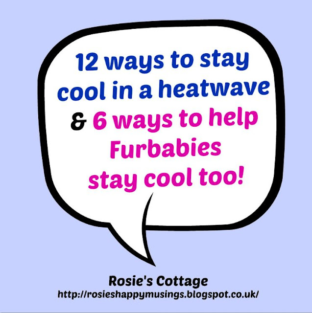 12 Ways To Stay Cool In A Heatwave & 6 Ways To Keep Furbabies Safe Too.
