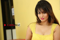 Cute Telugu Actress Shunaya Solanki High Definition Spicy Pos in Yellow Top and Skirt  0574.JPG