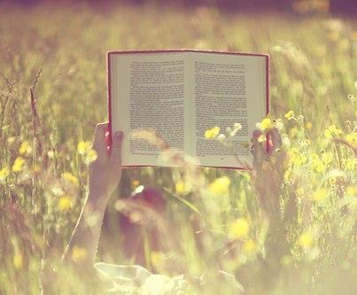 Especial: Livro, um objeto sensual 6