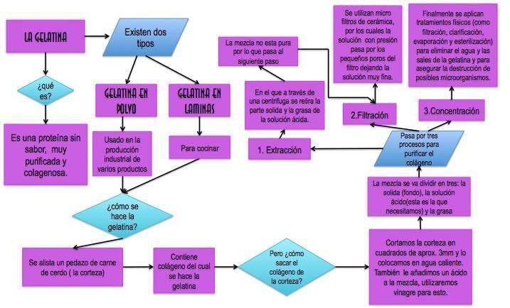 Bioqumica en la cocina diagrama de flujo acerca del proceso de diagrama de flujo acerca del proceso de fabricacin de la gelatina ccuart Images