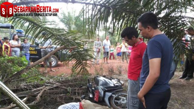 Seorang PNS Ditemukan Tewas di Kebun Sawit Bangka Belitung dengan Kaki Tertimpa Motor.