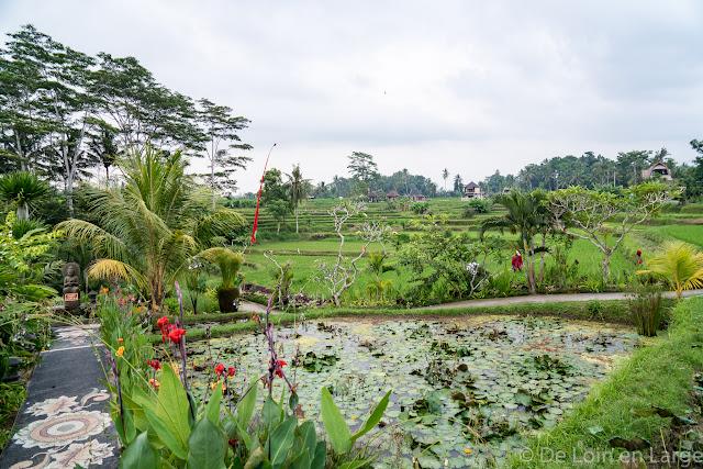 Karsa Spa - Campuhan - Ubud - Bali
