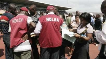 NDLEA nab clearing agents who disguised N222m drugs as hair extension, foodstuff