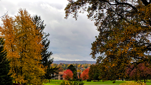 image of colorful autumn trees streching out across the landscape toward mountains in the distance
