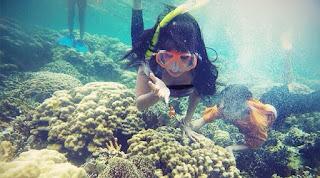 Pulau Pahawang Lampung Keindahan Bawah Laut Di Ujung Timur Sumatera