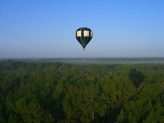 Voar com o Thompson Aire em Kissimmee