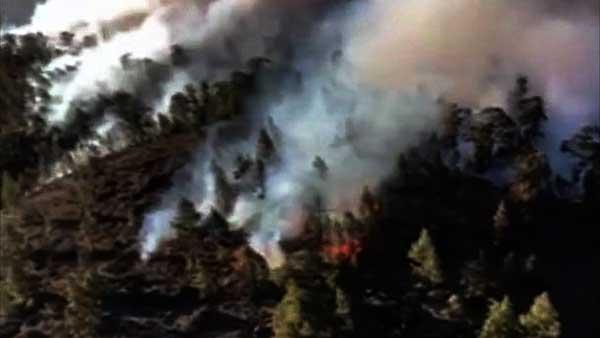 El incendio forestal de Granadilla,Tenerife, estabilizado
