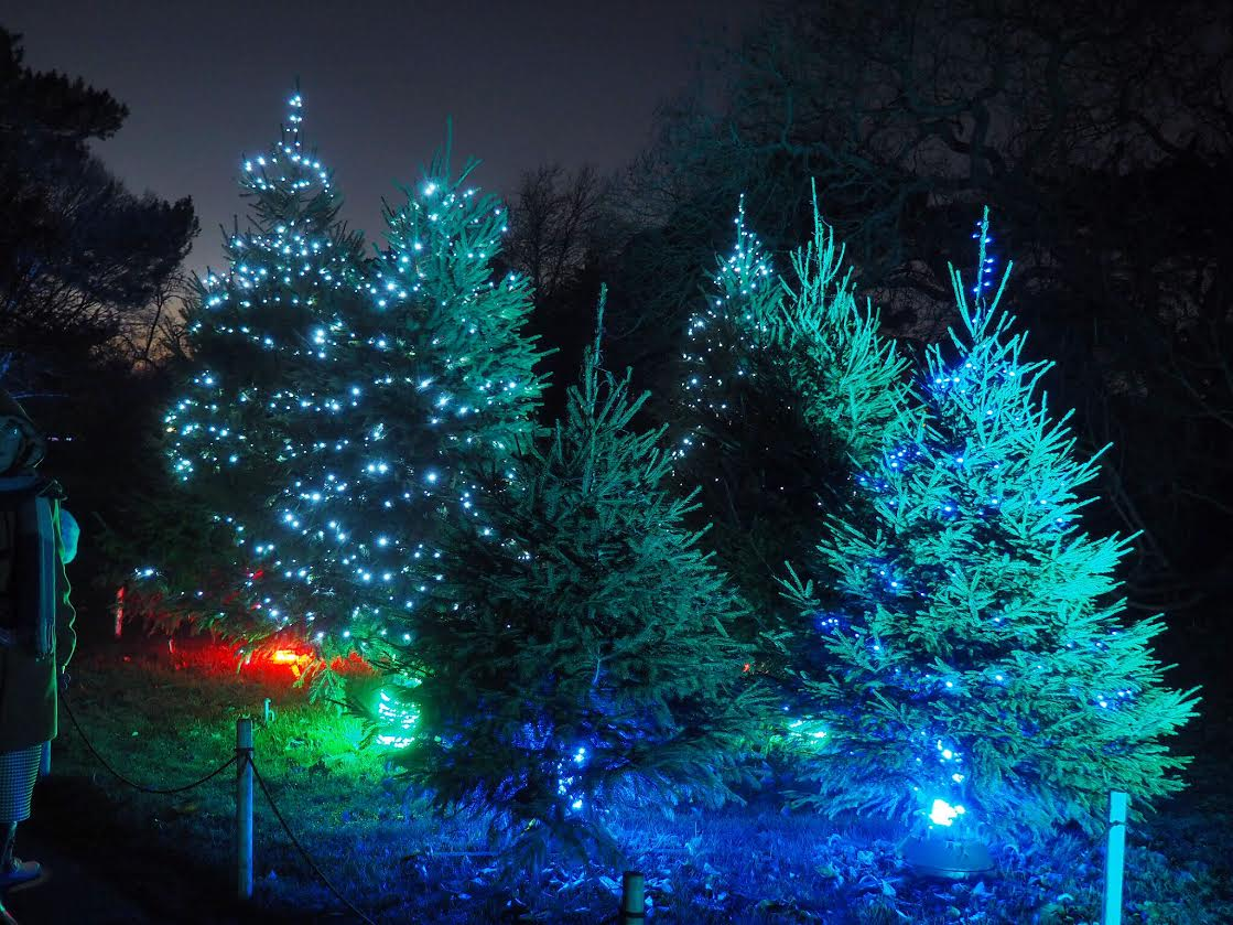 Kew Gardens christmas tree