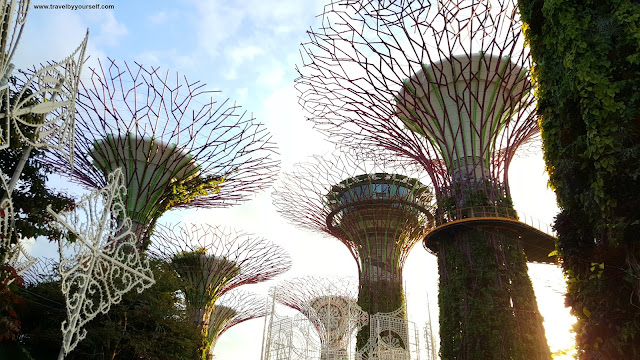 Super Tree Grove in Gardens by the Bay