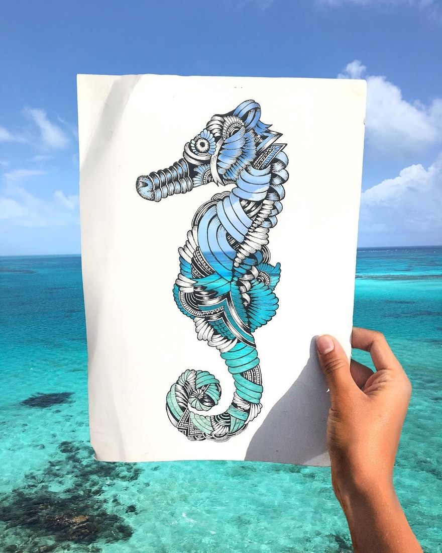 10-Seahorse-Faye-Halliday-Animal-Drawings-and-Mandalas-www-designstack-co