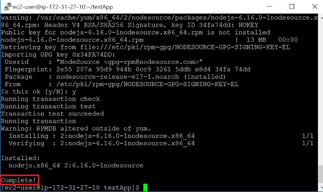Railsサーバー起動のためにNode.jsインストール完了