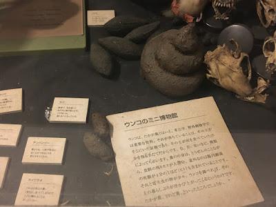 意味不明なミニ博物館