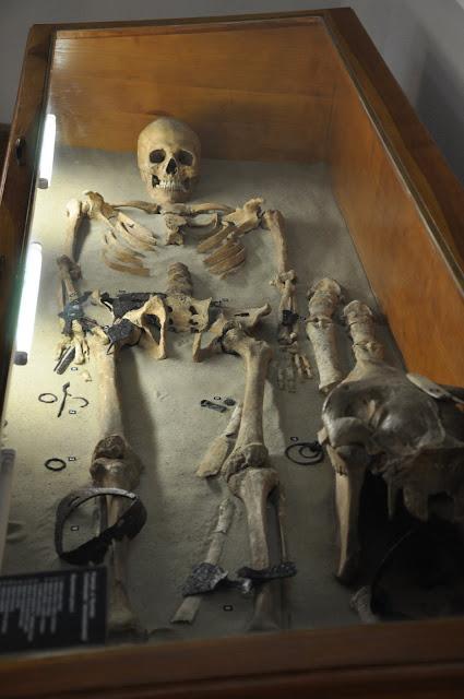 Muzeum Ziemi Przemyskiej - ekspozycja pochówku madziarskiego