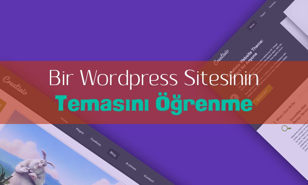 Bir Wordpress Sitesinin Temasını Öğrenme