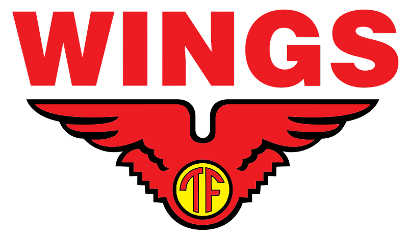 Operator Produksi PT.Lion Wing's (Wing's Group) 2019